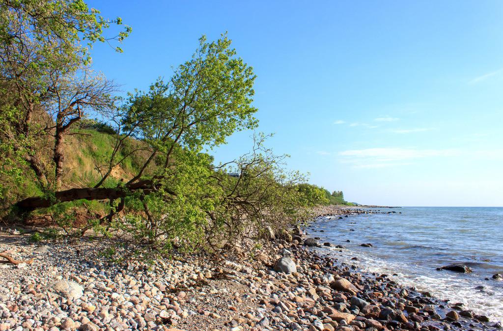 Frühling an der Ostsee   Naturstrand in Kleinwaabs