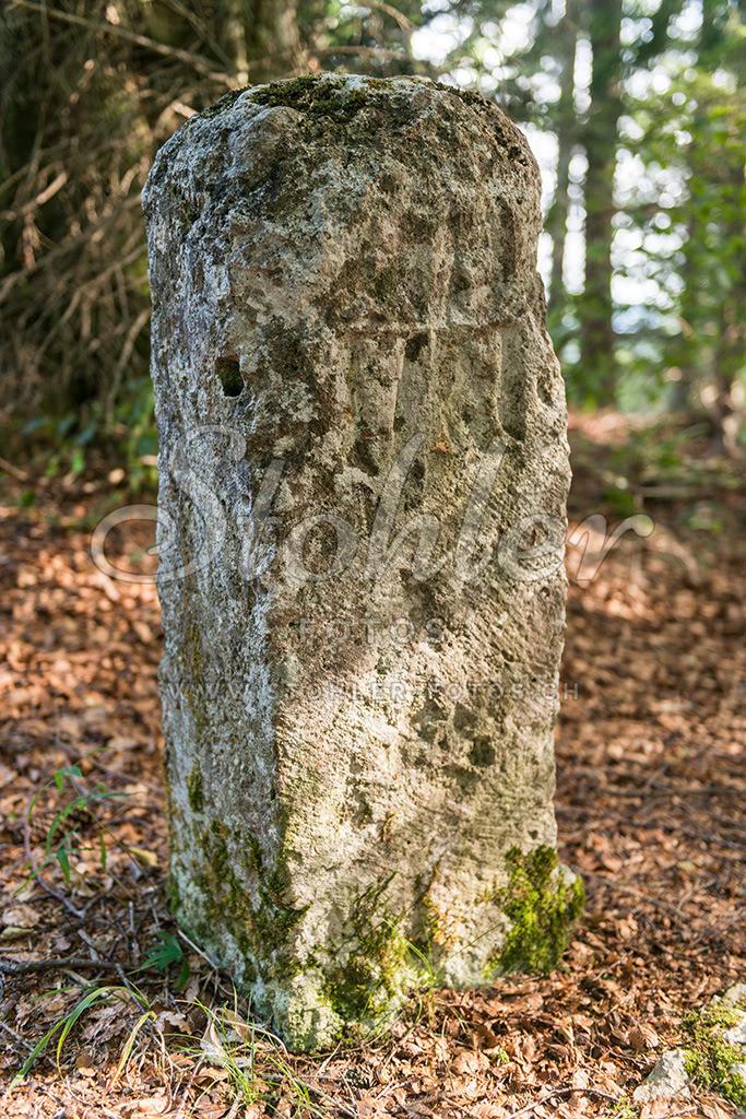 Grenzstein, Courroux (JU) | Kantonsgrenzstein im Wald auf dem Retemberg (899 m.ü.M.), Courroux im Kanton Jura.