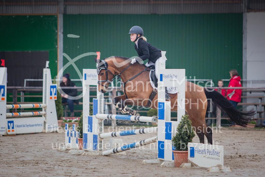 190406_Frühlingsfest_StilE-016   Frühlingsfest der Pferde 2019, von Lützow Herford, Stil-WB mit erlaubter Zeit