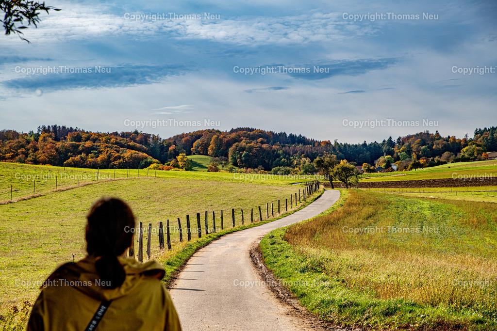 DSC_9424 | bli,Lautertal, Herbst, goldener Oktober zum Schlussakkord, hatte der Oktober uns Wettermäßig nicht gerade verwöhnt war der vergangenen sonnige Sonntag für viele Bergsträßer eine willkommene Gelegenheit in Corona Abstand und Maksenzeiten die Natur zu genießen,  wie hier zwischen Kolmbach und Raidelbach,  ,, Bild: Thomas Neu