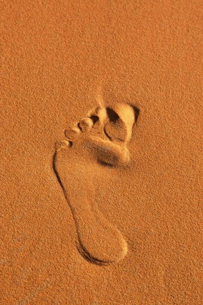 Best. Nr. erde01 | Fußabdruck eines Beduinen im Wüstensand, Erg Chebbi, Marokko | Das Element Erde repräsentiert das Zentrum aber auch den Südwesten und Nordosten, seine Jahreszeit ist der Spätsommer, seine Farben sind Gelb und braune und beige Naturtöne, es bieten sich quadratische oder flache rechteckige Formate und horizontale Formen an. Erde steht für Bodenständigkeit, Dauerhaftigkeit und Zuverlässigkeit.