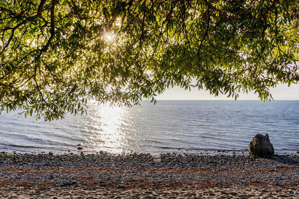 Frühling an der Ostsee | Strand in Hökholz