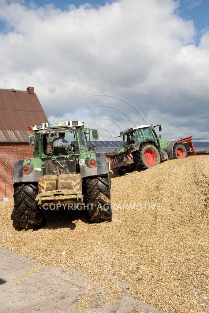 20080914-IMG_9128 | Silomais wird gehäckselt - AGRARFOTO Bilder aus der Landwirtschaft