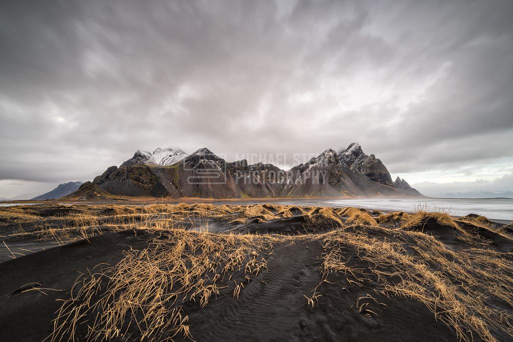 Island - Vestrahorn mit Dünen | Vestrahorn im Winter mit goldenem Gras auf schwarzen Dünen