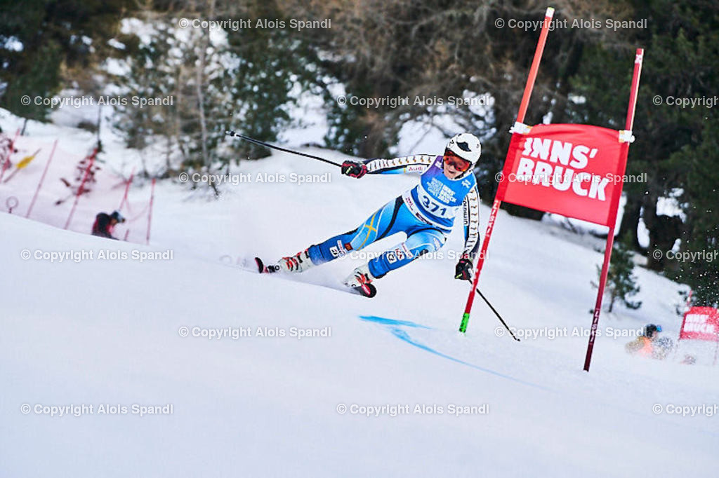 ALS5501_WWMG_GS-II_C | (C) FotoLois.com, Alois Spandl, WinterWorldMastersGames 2020 Innsbruck, Giant Slalom-II Gruppe C Damen, Patscherkofel Olympiaabfahrt, Mi 15. Jänner 2020.
