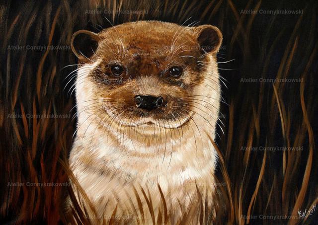 Otter im Gras 4000x300_bearbeitet-1 | Phantastischer Realismus aus dem Atelier Conny Krakowski. Verkäuflich als Poster, Leinwanddruck und vieles mehr.