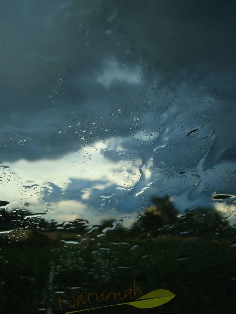 Wasserwelt | Die Wolken verschwimmen, genauso wie die dunklen Bäume. Die Welt ist geheimnisvoll und lädt Dich ein, öfter mal den Blickpunkt zu wechseln. So entsteht Dynamik.