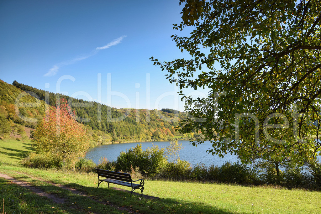 Herbstliche Idylle am Meerfelder Maar | Meerfeld, Vulkaneifel