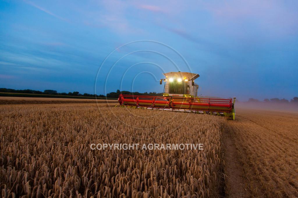 20120817-_MG_8863 | Weizenernte in der Dämmerung