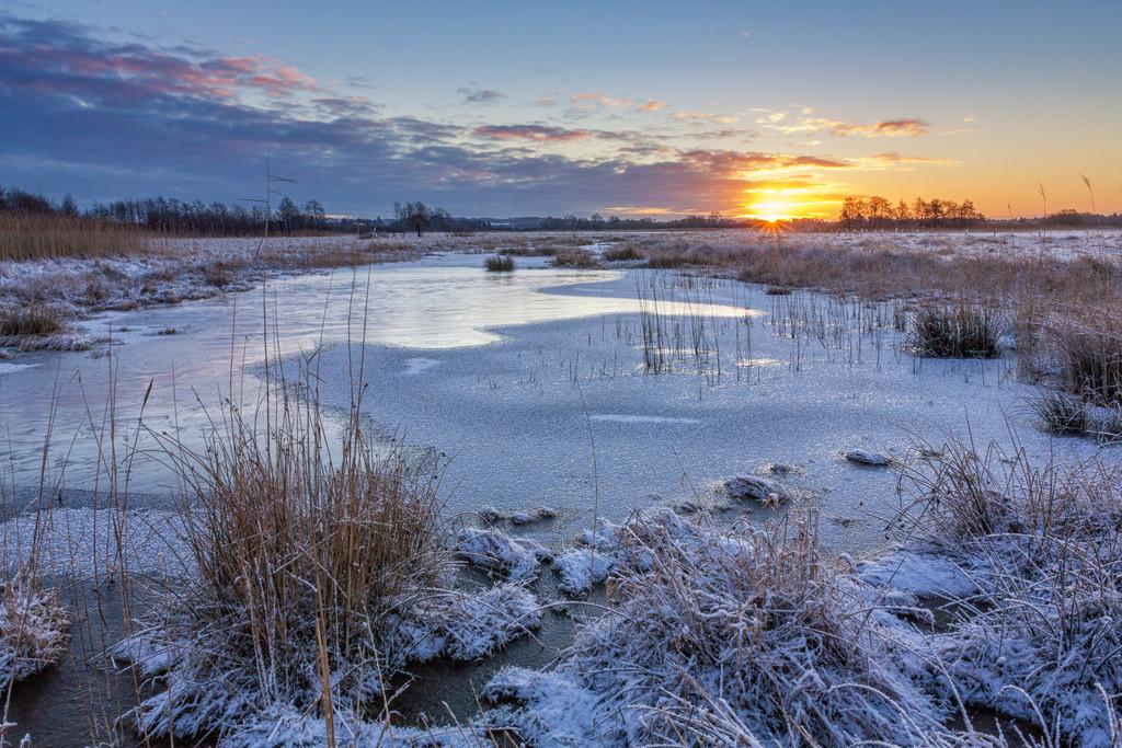 Sonnenaufgang im Winter | Winterlicher Sonnenaufgang in den Hammewiesen.
