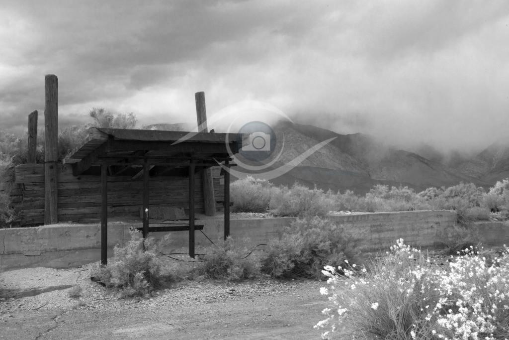 USA_Sierra Nevada_02