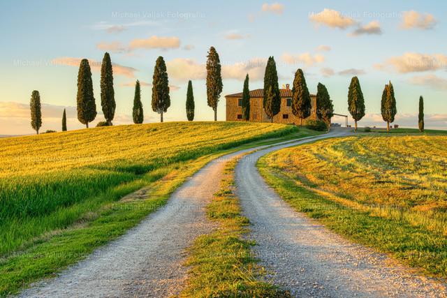 Landhaus in der Toskana | Die Abendsonne taucht das Landhaus mit der Zufahrt und die Felder in ein schönes warmes Licht.