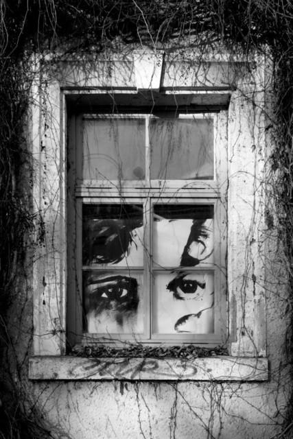 IMG_8980.1 | Fenster in Weimar -Dezember 2013-