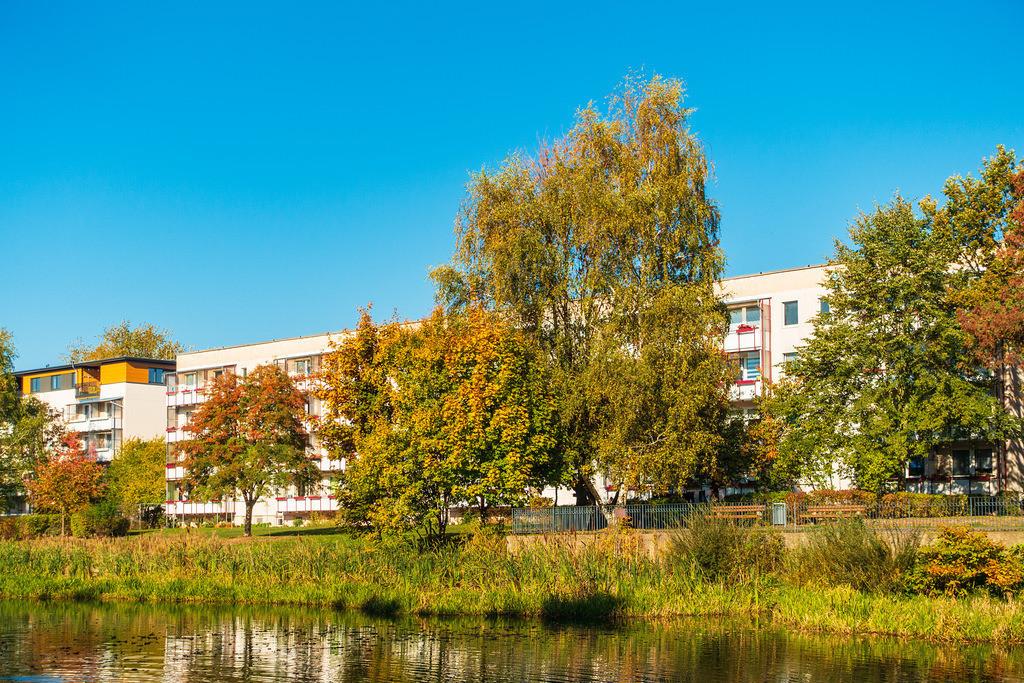 rk_05108   Herbstlich gefärbte Bäume mit blauen Himmel.