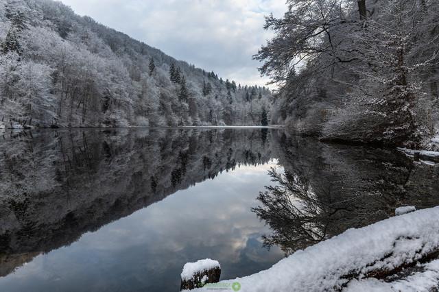 Winterlandschaft | Wasserspiegelung an einem kalte Wintertag