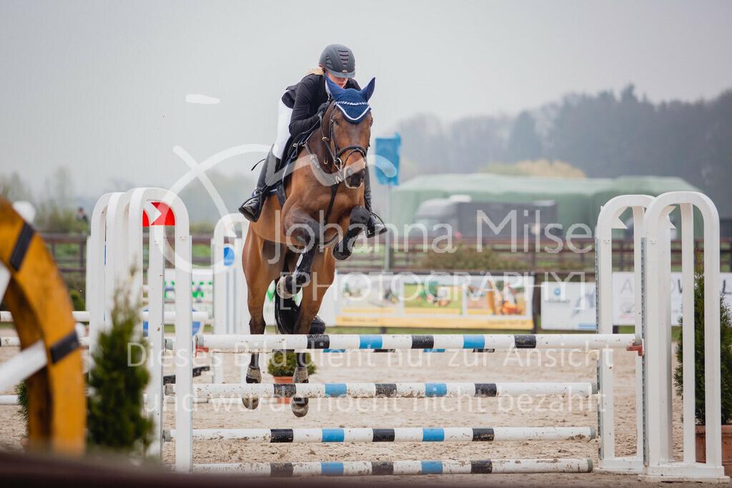 190404_Frühlingsfest_Sprpf-A-118 | Frühlingsfest Herford 2019 Springpferdeprüfung Klasse A**