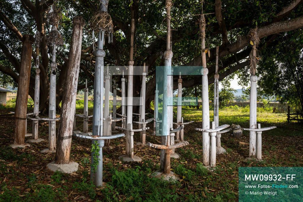 MW09932-FF | Myanmar | Loikaw | Reportage: Loikaw im Kayah State | Heilige Totempfähle (Kayhto Bo) auf einem Ritualplatz unter großen Banyan-Bäumen im Dorf Dor So Bee. Jedes Jahr im März oder April feiern die Kayah das traditionelle Kay Htoe Boe Festival.   ** Feindaten bitte anfragen bei Mario Weigt Photography, info@asia-stories.com **