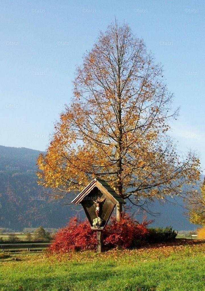 Herbst-W1_11.05_0021k