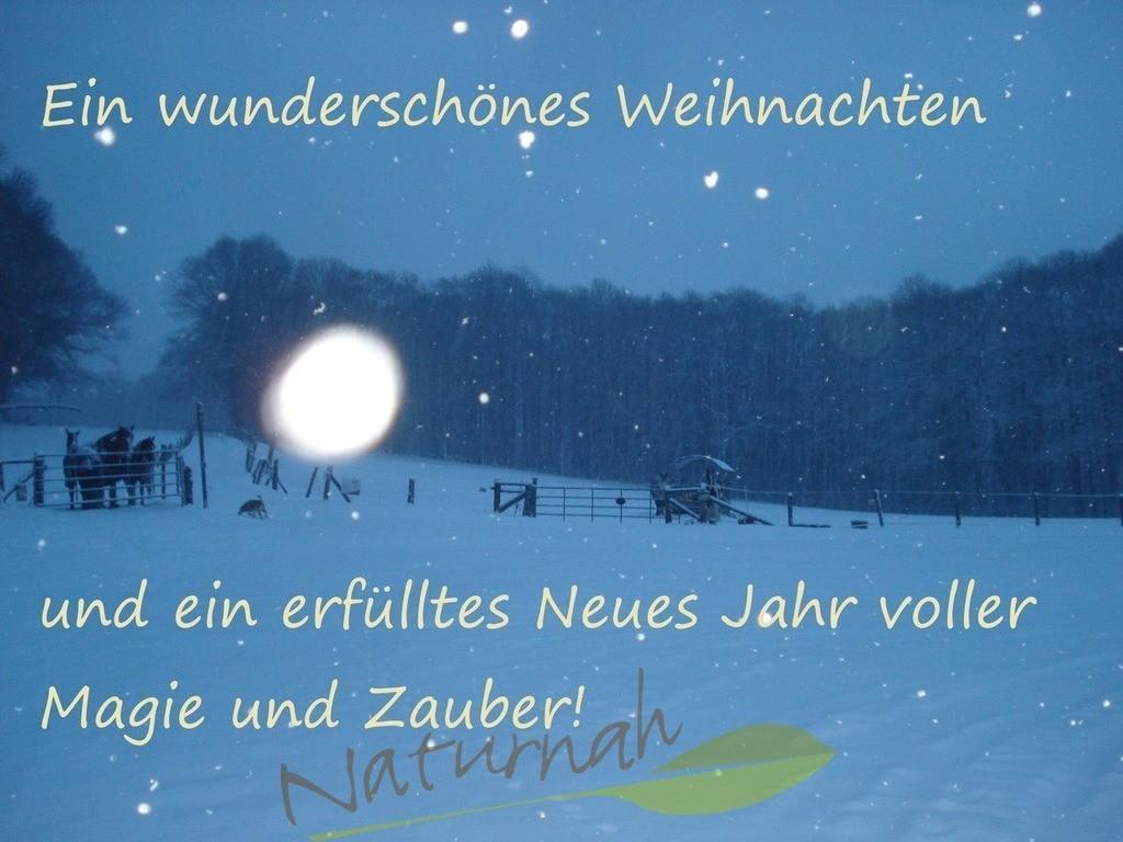 Zaubervolles Jahr und Weihnachten