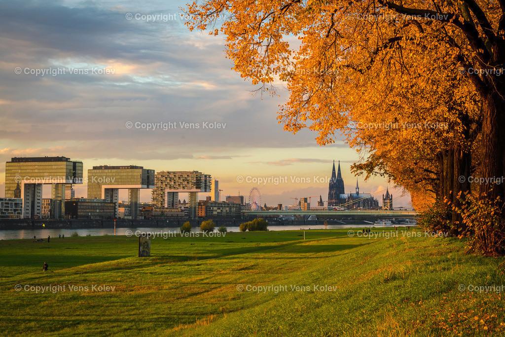 Herbst in Köln | Herbst in Köln