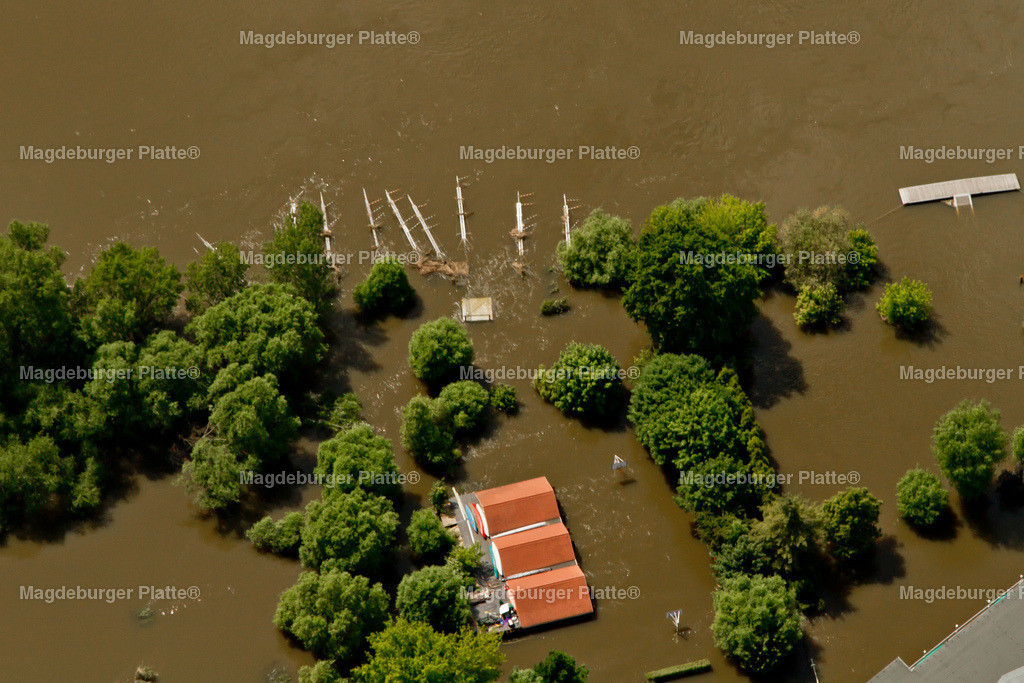 Hochwasser Magdeburg Bootshaus 2013-9814