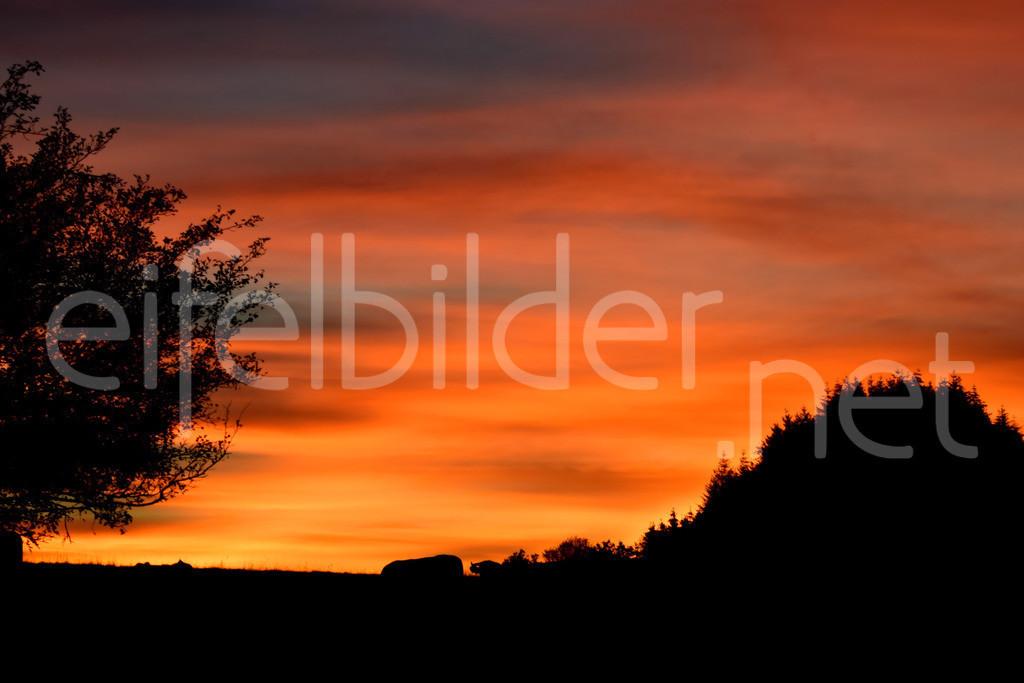 Sonnenuntergang in der Vulkaneifel   Abendrot über Daun Weiersbach in der Eifel