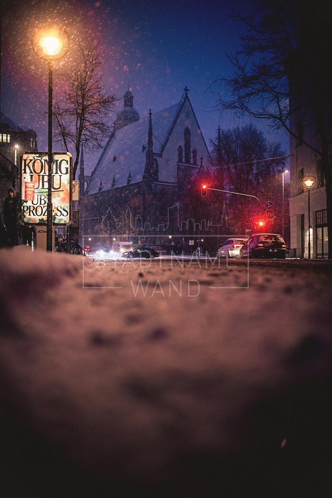 Winter Schnee Leipzig  (6)