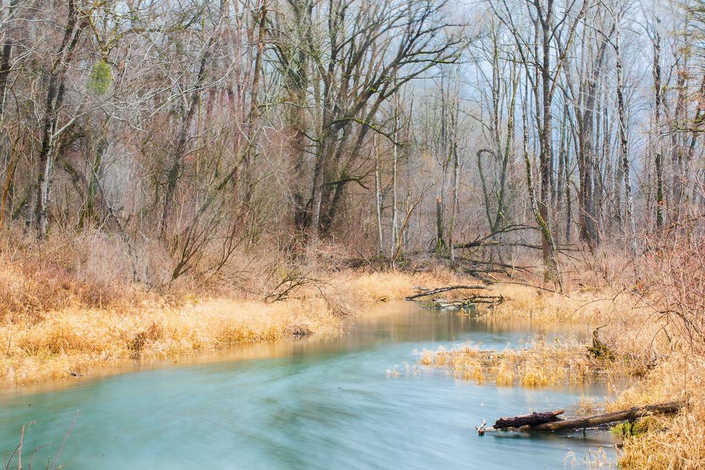 Altwasser bei Nußdorf am Inn