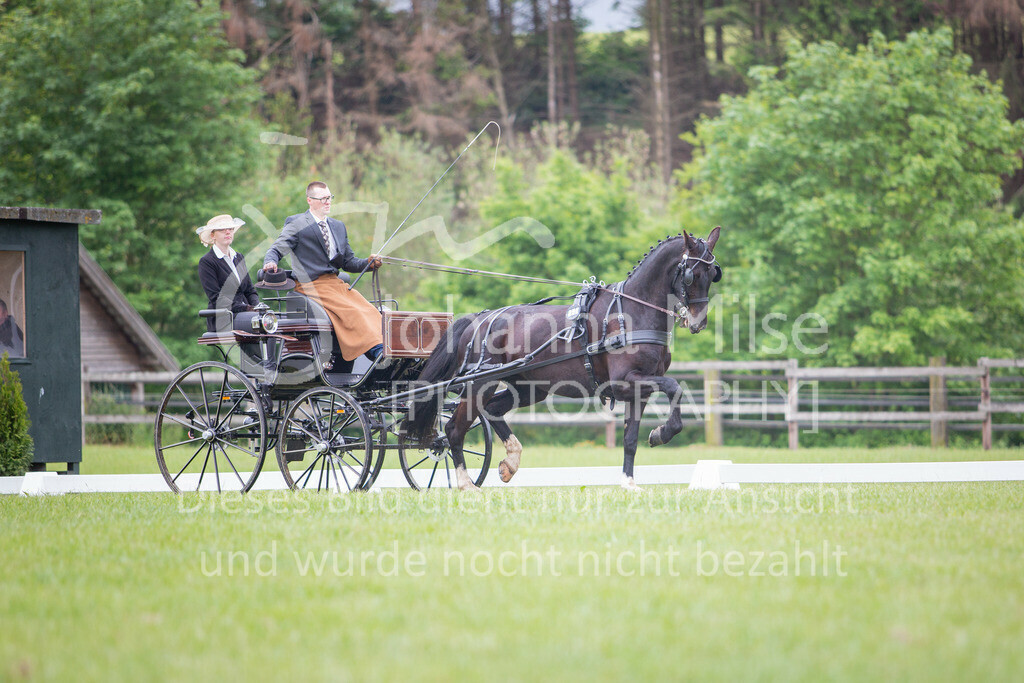 190525_Fahren-022 | Pferdesporttage Herford 2019 Fahren