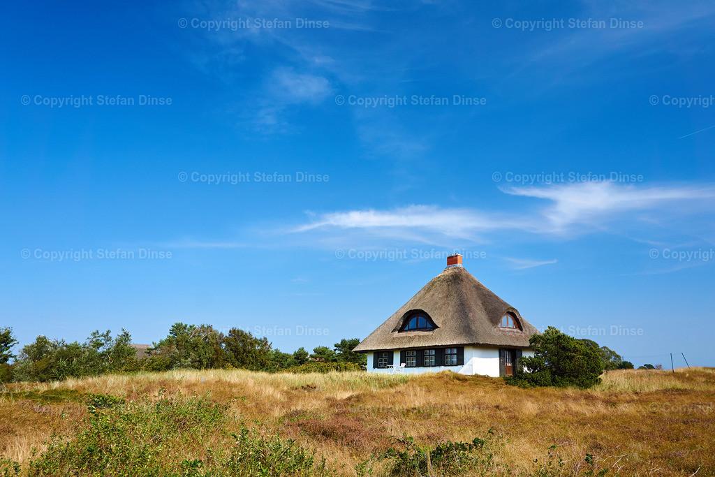 reed house on isle of Hiddensee | idyllic countryside landscape with reed house on isle of Hiddensee