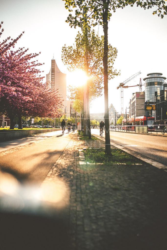 Frühling Leipzig