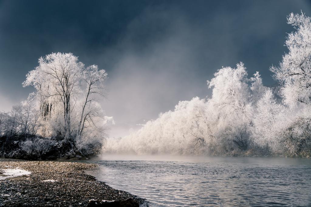Eisblaue Enns - Panorama | Die Morgensonne erwärmt die mit Eis bedeckten Bäume am Ufer der Enns.