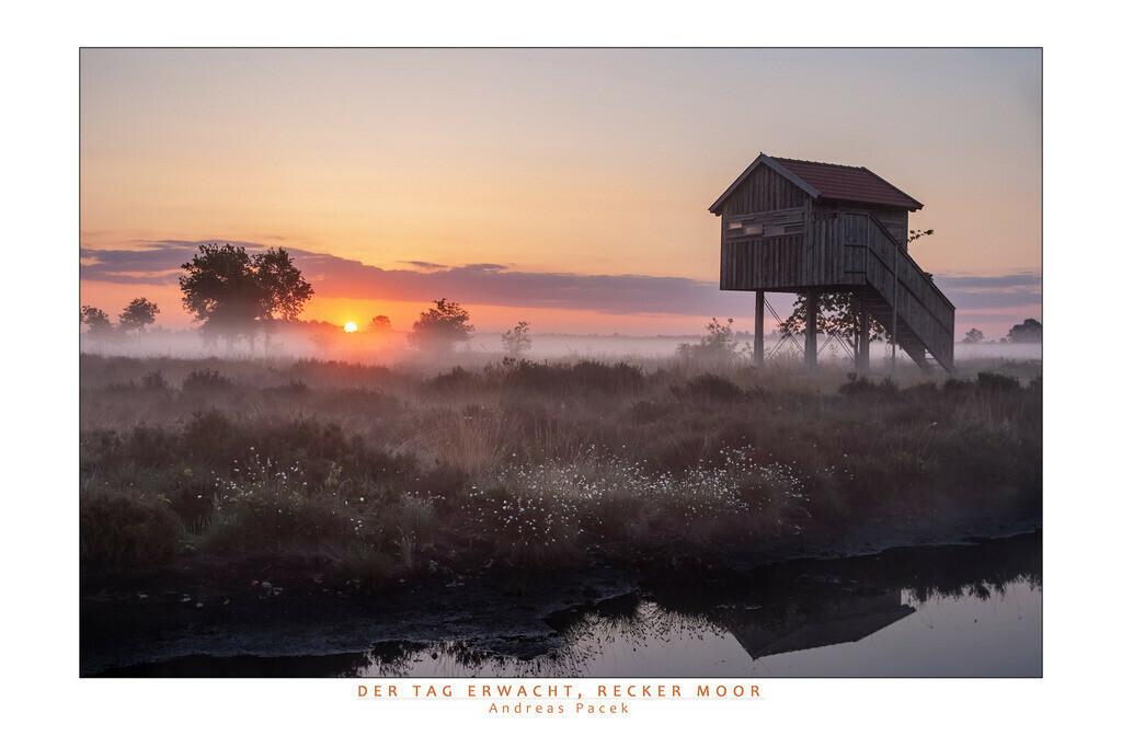 Der Tag erwacht, Recker Moor   Die Serie 'Deutschlands Landschaften' zeigt die schönsten und wildesten deutschen Landschaften.