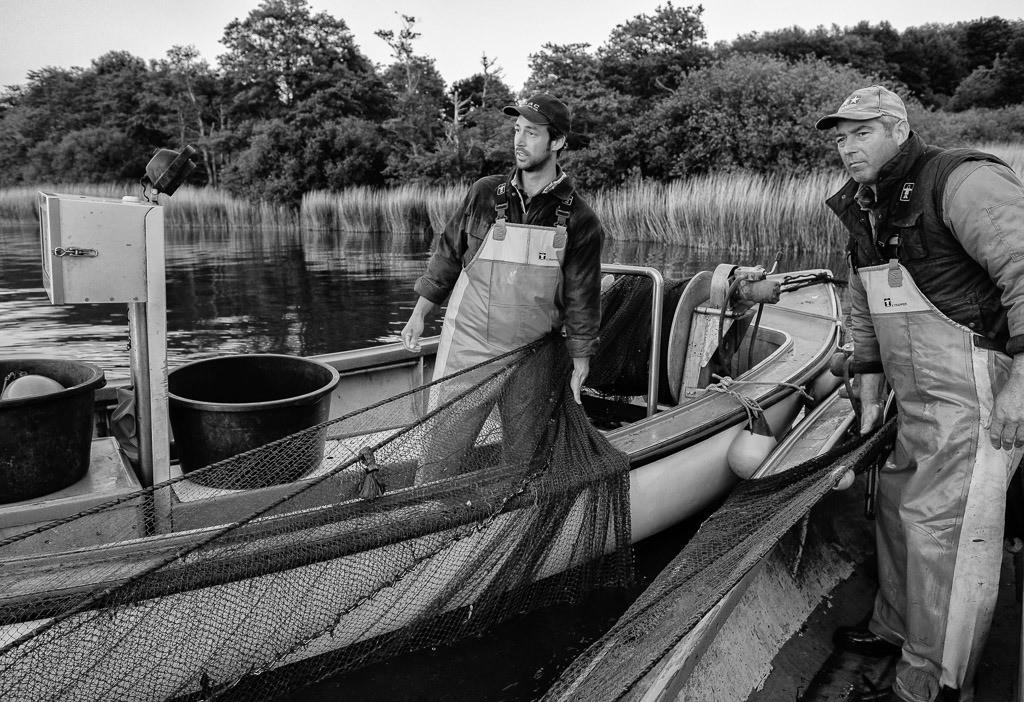 Wadenfischen auf der Schlei © Holger Rüdel   Die Schleswiger Fischer Jörn und Nils Ross (links) beim Einholen eines Wadennetzes auf der Kleinen Breite der Schlei. Höchste Konzentration ist gefragt. Jeder Griff muss sitzen.