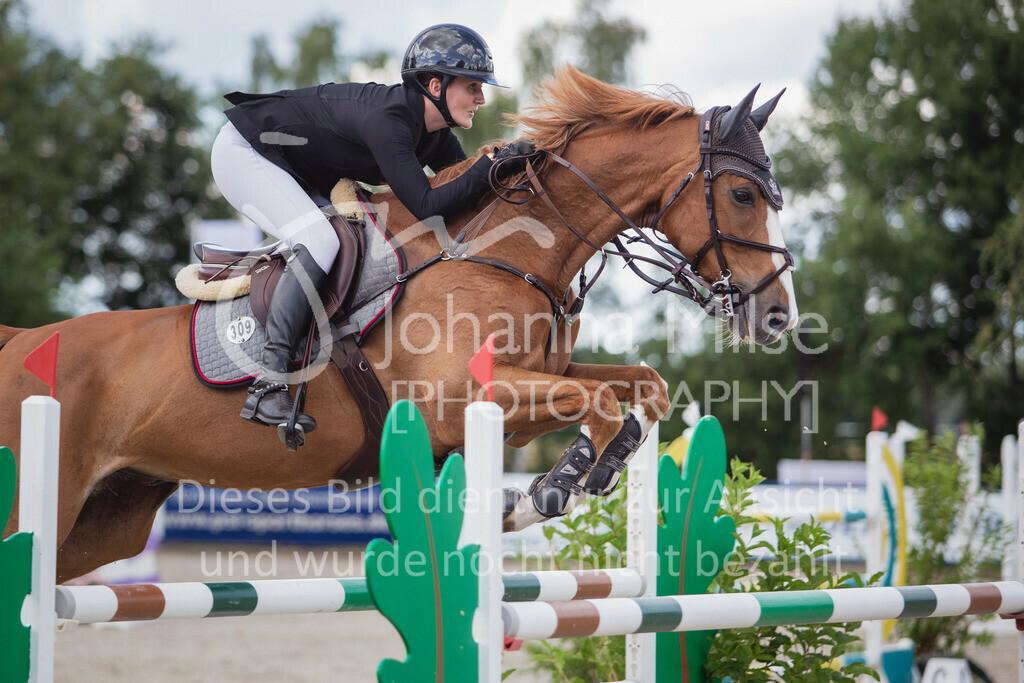 200726_Wohlde_M2-Springen-210 | Late Entry Wohlde Pedersen Sporthorses 26.07.2020 Springprüfung Kl. M** 7jährig + ält. Pferde