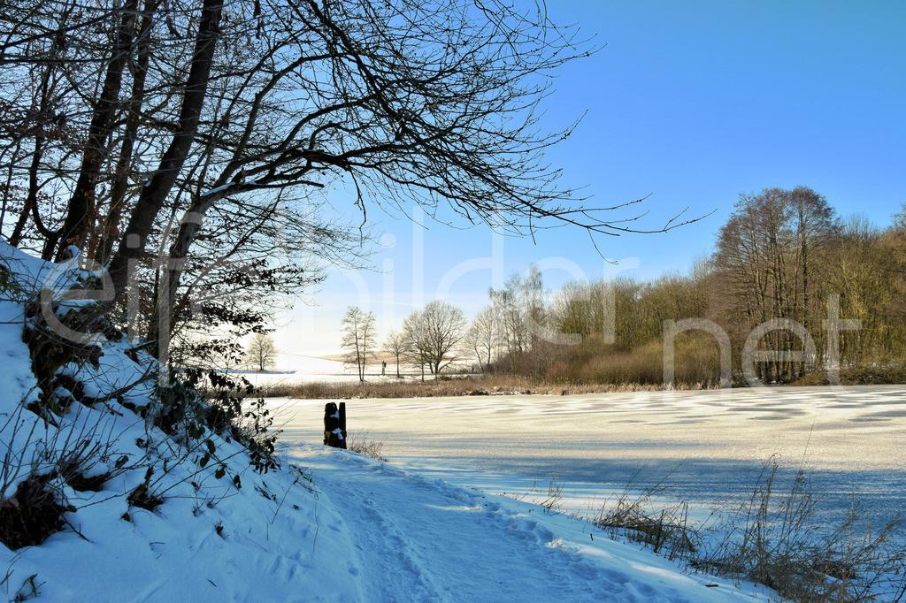Winter am Holzmaar in der Eifel | Winterlandschaft am Holzmaar in der Eifel (Vulkaneifel)
