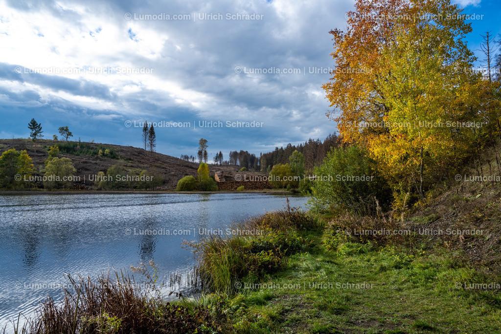 10049-11307 - Landschaft bei Trautenstein _ Harz   max. Auflösung 8256 x 5504