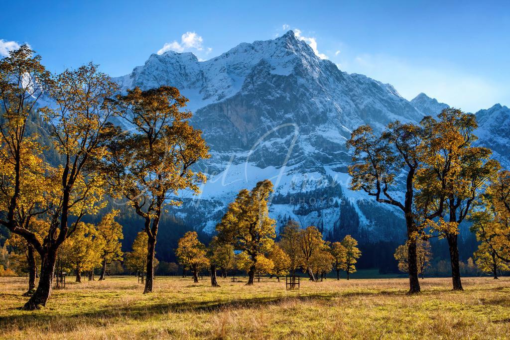 Großer Ahornboden | Herbst am großen Ahornboden