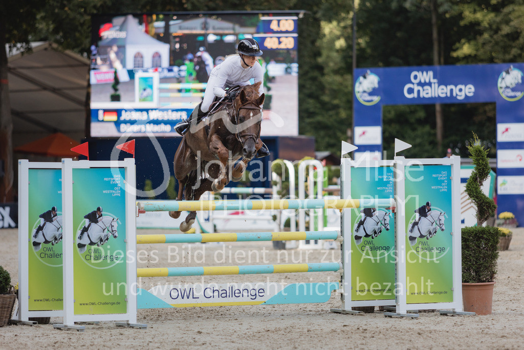 210912_OWLCh_YoungsterTrophy_7j-433 | FUNDIS Youngster Tour (CSIYH1*) 1. Qualifikation für 7jährige Pferde international 1,35m