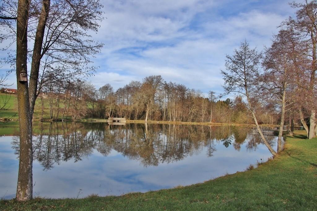 Oggenrieder Weiher | Der Oggenrieder Weiher bei Irsee im Ostallgäu