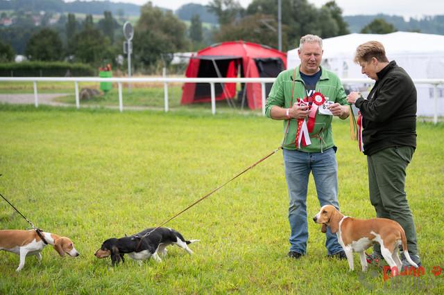 Hundeausstellung CACIB Fehraltorf SUMMER | CACIB Fehraltorf SUMMER in Fehraltdorf  28.08.2021 Foto: Leo Wyden