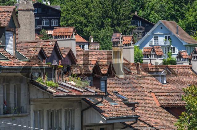 IMGP0429 | Bern