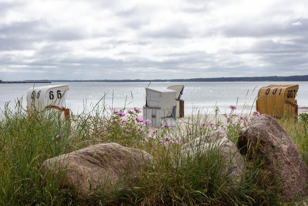 Strand in Eckernföre | Blumen und Strandkörbe am Strand in Eckernförde