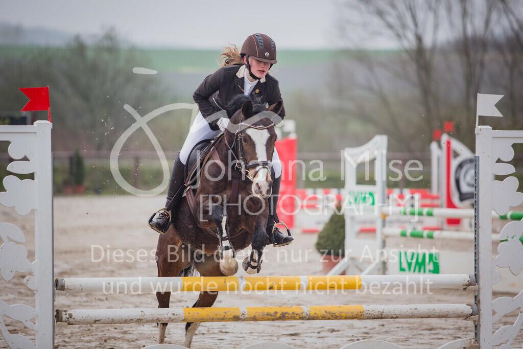 190406_Frühlingsfest_StilE-006 | Frühlingsfest der Pferde 2019, von Lützow Herford, Stil-WB mit erlaubter Zeit