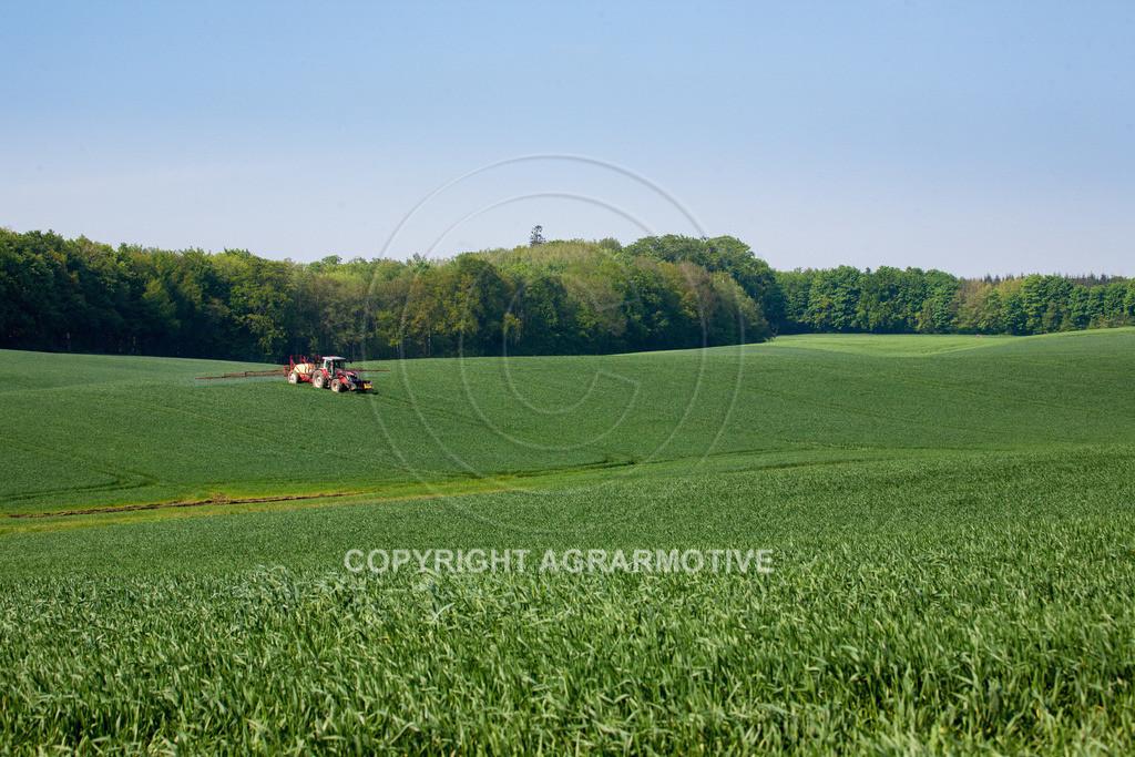 20130516-_MG_9776 | Feldspritze im Weizenfeld - AGRAFOTO Bildagentur