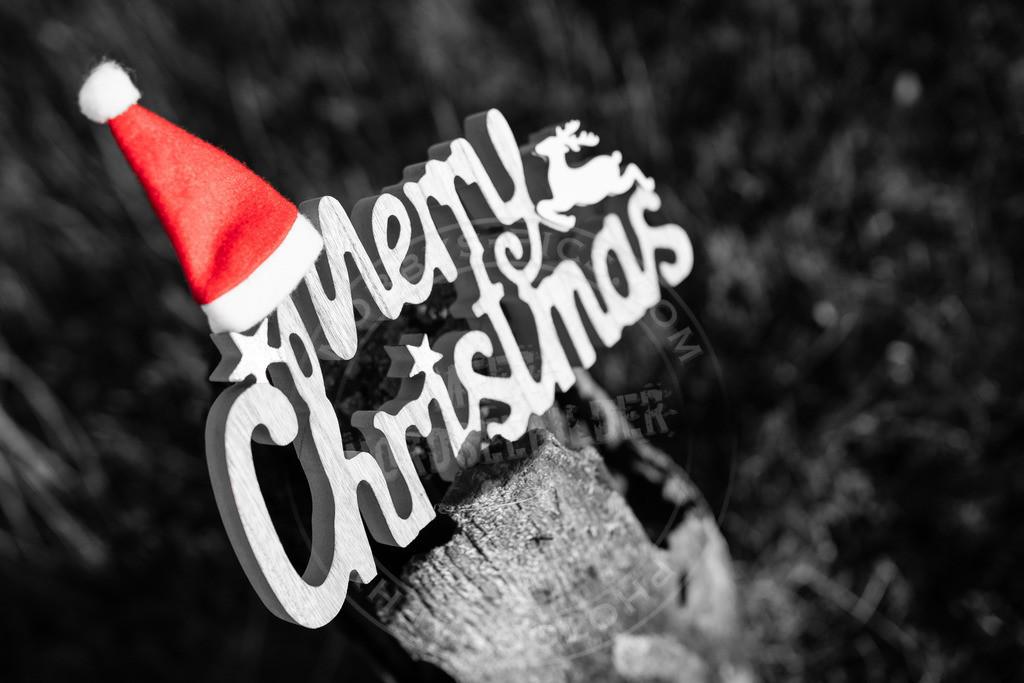 fotograf sankt peter-ording mobbys-pics.com_DSC2752 | Frohe Weihnachten