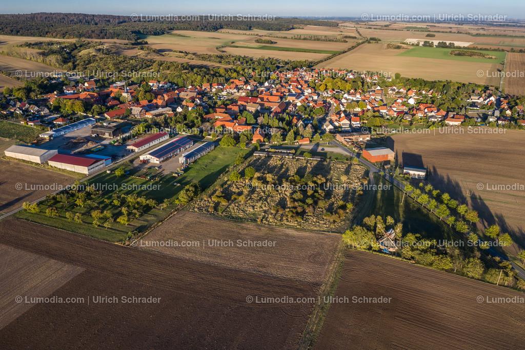 10049-50774 - Sargstedt bei Halberstadt