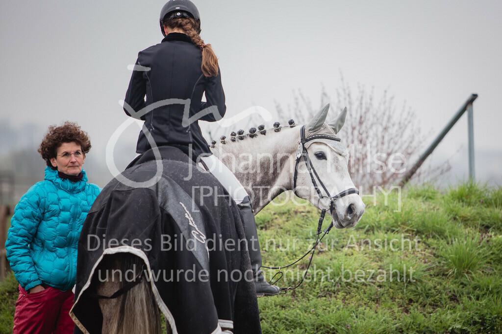 190406_Frühlingsfest_StilE-054 | Frühlingsfest der Pferde 2019, von Lützow Herford, Stil-WB mit erlaubter Zeit