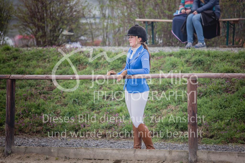 190406_Frühlingsfest_StilE-062 | Frühlingsfest der Pferde 2019, von Lützow Herford, Stil-WB mit erlaubter Zeit
