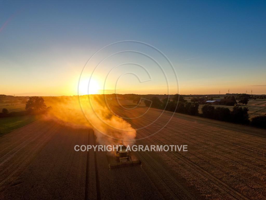 20160815-DJI_0482 | Weizenernte beim Sonnenuntergang - AGRARMOTIVE
